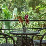 Manuel Antonio Costa Rica in The Rainy Season